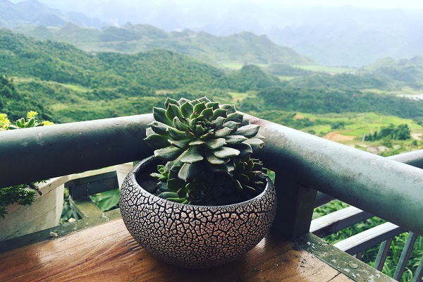 Review Ha Giang Travel From A To Z
