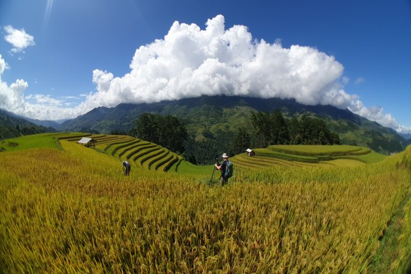Top 10 places for Photography Tours in Northern Vietnam