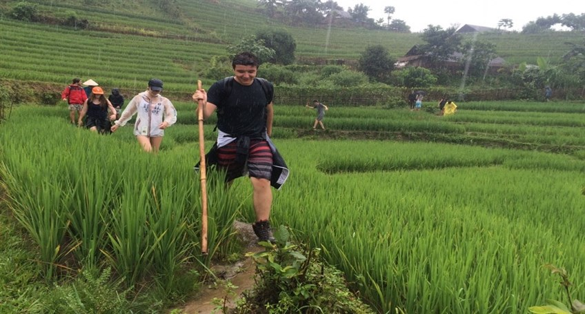 trekking and homestay tours in sapa