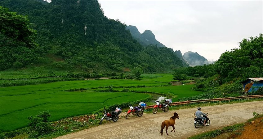 things to do in northeast vietnam