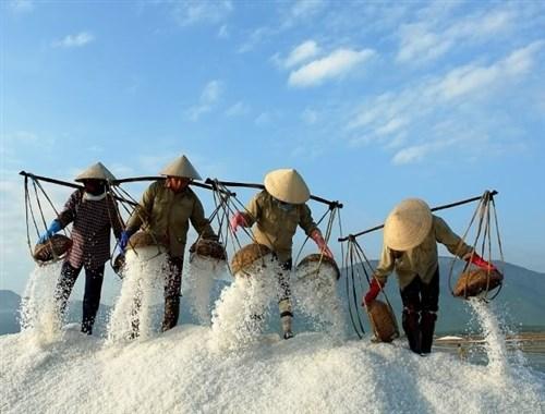 Vietnam photo tour to amazing salt fields