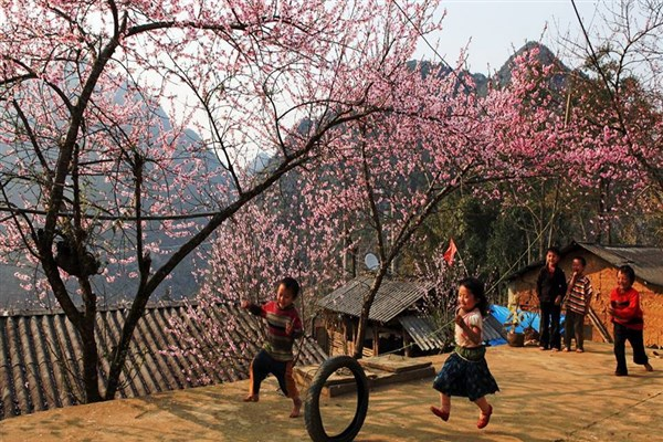 Vietnam's Spring Begins in March