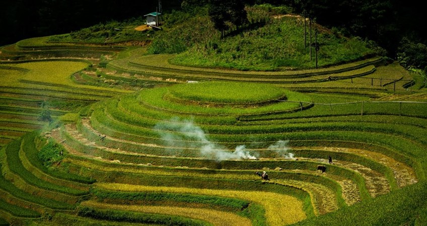 mu cang chai travel guide