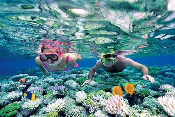 Top Diving Sites in Vietnam to Visit