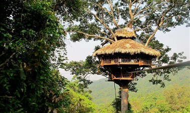 Gibbon Experience in Huay Xai