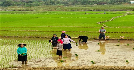 PT04: Best of The North Vietnam - 12 days / 11 nights from Hanoi