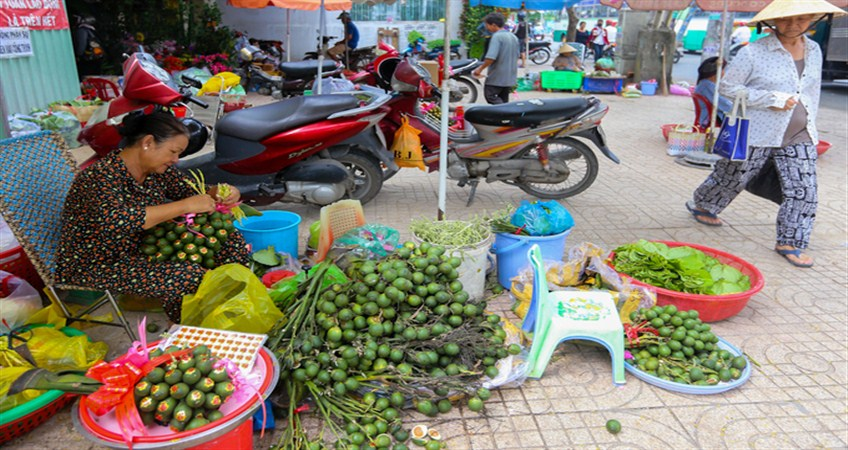 legend of the betel leaves and the areca in vietnam