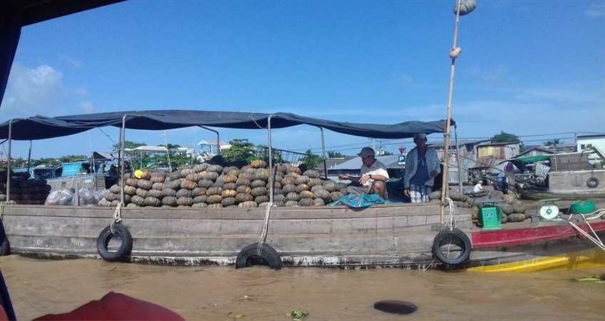 mekong delta tour for malaysian