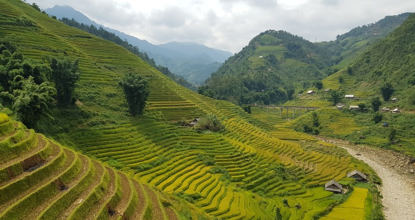 vietnam tour from the uk sapa
