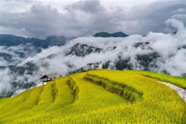 Vietnam tourism received Travel Awards in 2021