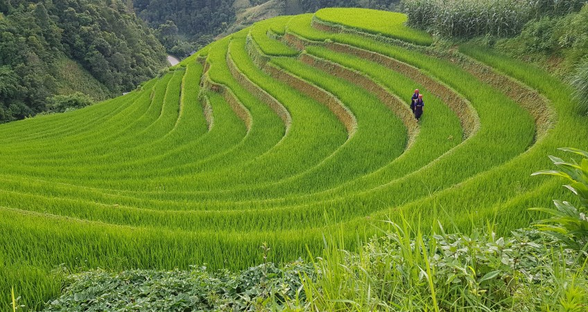 mu cang chai photography tour