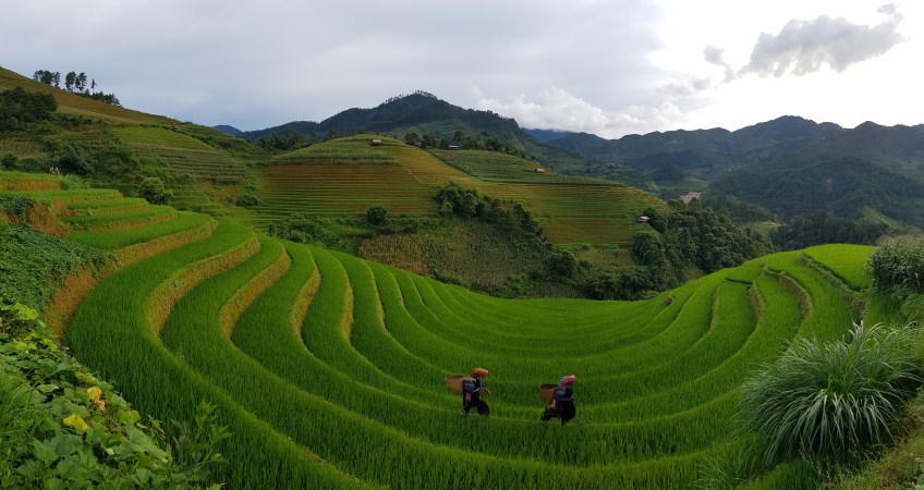 mu cang chai photo tour
