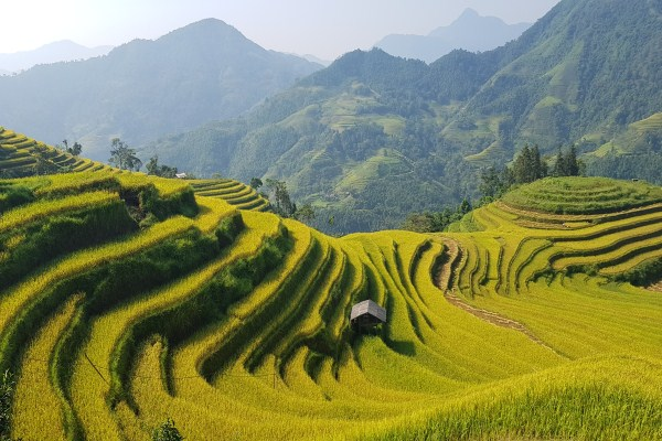 How to explore Vietnam at a lower price