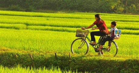 ADI04: Biking Cambodia & Vietnam Tour - 11 days from Siem Reap