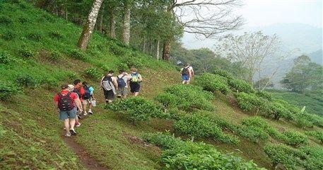 ADT02: Chiang Dao Trek - 4 days / 3 nights