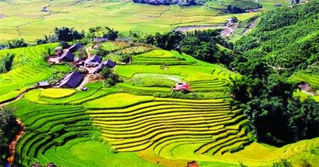 SP09: Sapa Homestay Tour - 4 days / 3 nights