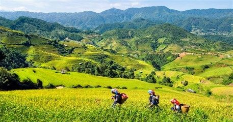 SP01: Sapa Tour At a Glance by Road - 2 days / 1 night