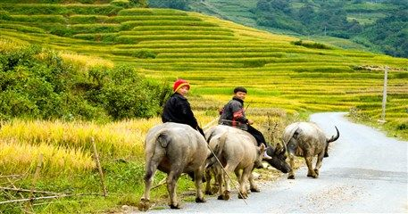 LV01: Best of Laos and Vietnam Tour - 19 days from Luang Prabang