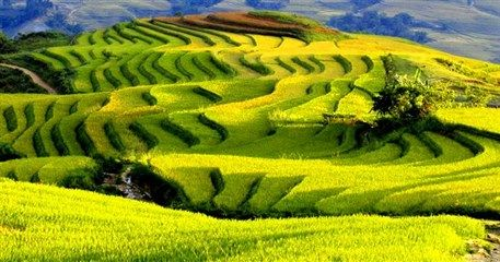 SP04: Amazing Sapa Tour By Road - 5 days / 4 nights