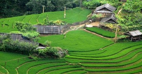 CT22: Vietnam Homestay Tour - 18 days from Hanoi