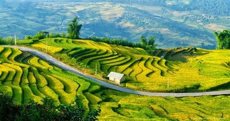 LT06: Diverse Vietnam Tour - 17 days from Hanoi