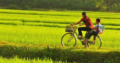 BT01: Cycling Vietnam, Cuc Phuong & Tam Coc - 2 days / 1night