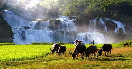 PT03: Scenic Vietnam photo tour to untouched mountains - 11 days / 10 nights from Hanoi