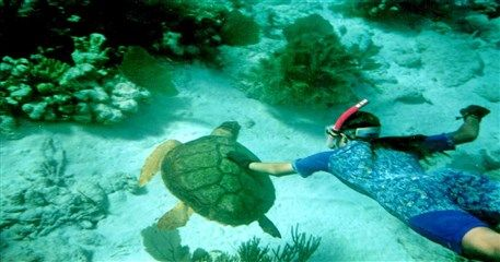 NT06: Nha Trang Diving Tour - 4 days / 3 nights