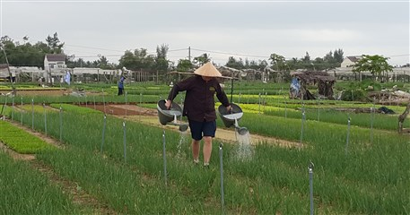 HST11: Hoi An Homestay Tour - 2 days / 1 night