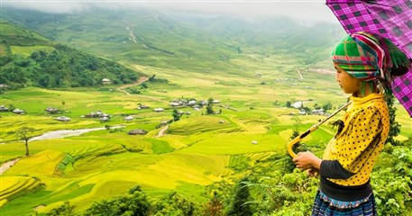 HST08: Mu Cang Chai Homestay Tour - 4 days / 3 nights