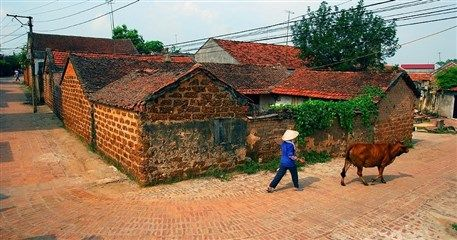 HH15: Escape To Authentic Vietnamese Village - 2 days / 1 night