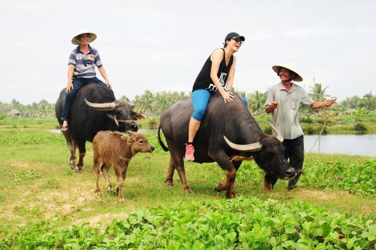 The best time of year to visit Hoi An