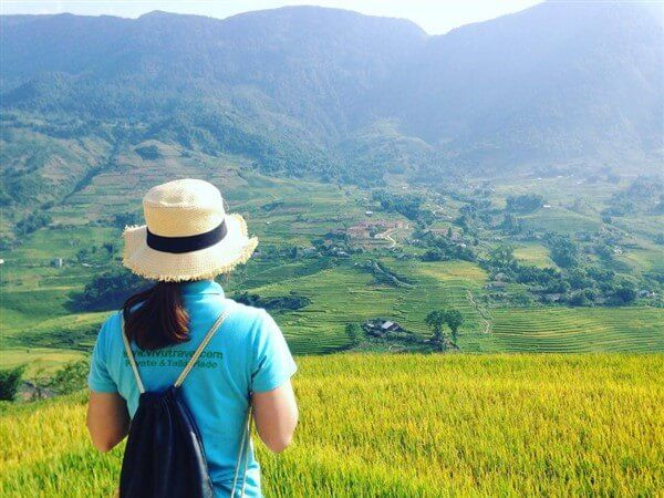 Visiting Sapa in Harvest Season