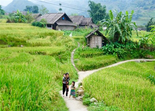 Best time to see the north of Vietnam