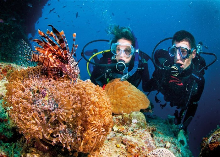Coral diving experience in Phu Quoc Island