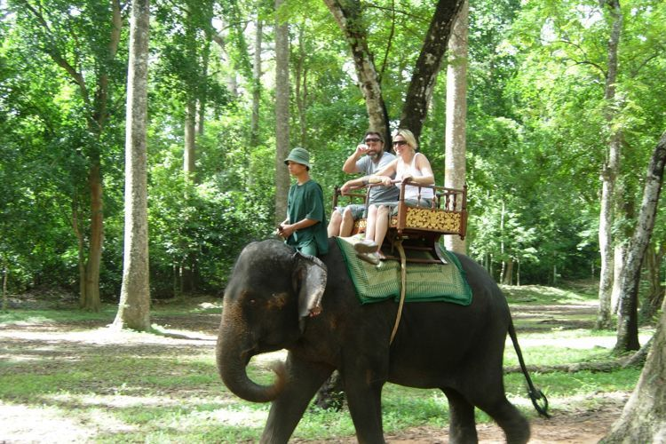 The most interesting activities in Cambodia tour