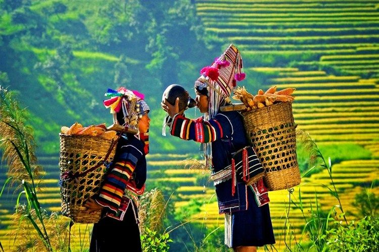 IVM04: Travel Myanmar, Vietnam, Cambodia - 16 days / 15 nights