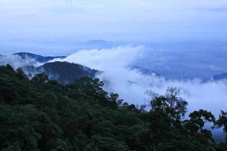 Tam Dao National Park