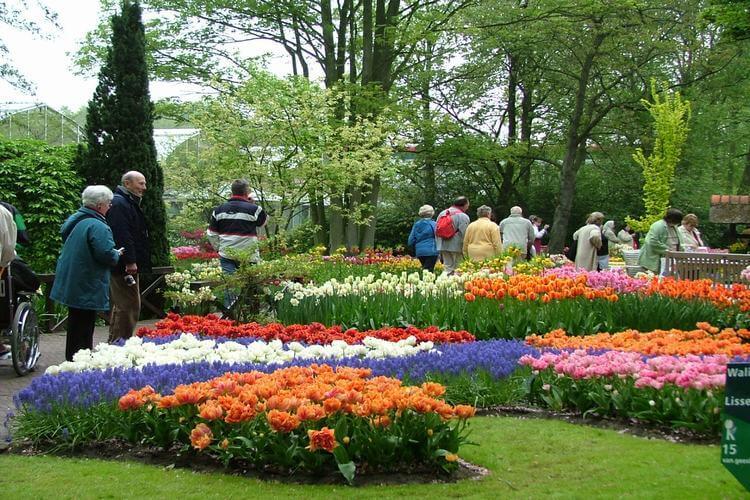 Dalat Flower Gardens