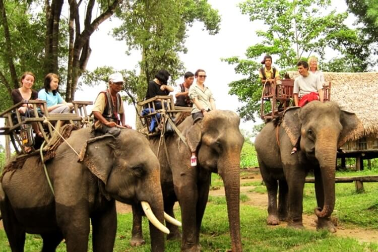 Riding elephants in Don village