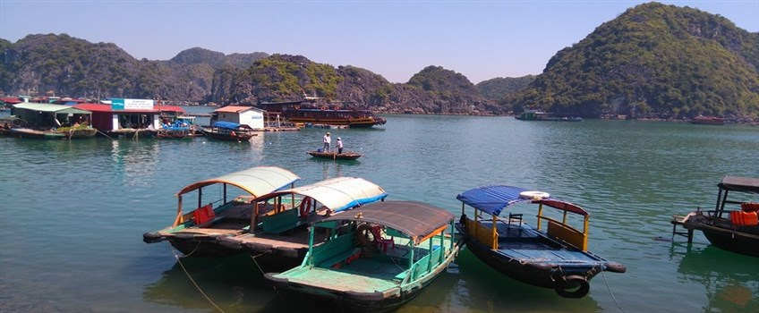 cat ba island tour packages