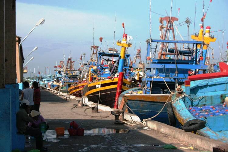 Visit Tran Phu fish market in Vung Tau in Vietnam Tour