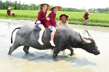 Hoi An festival promotes rural tourism
