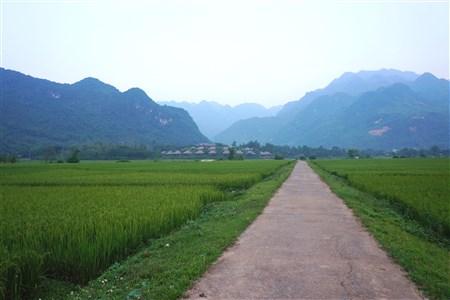 Mai Chau Ecolodge offers promotion